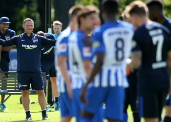 hertha bsc training pal dardai