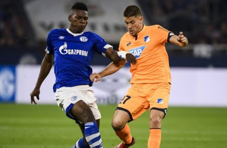 20.04.2019, xkvx, Fussball 1.Bundesliga, FC Schalke 04 - TSG 1899 Hoffenheim emspor, v.l. Breel Embolo (S04 - Schalke 04), Andrej Kramaric (TSG 1899 Hoffenheim) (DFL/DFB REGULATIONS PROHIBIT ANY USE OF PHOTOGRAPHS as IMAGE SEQUENCES and/or QUASI-VIDEO) Gelsenkirchen *** 20 04 2019 xkvx Football 1 Bundesliga FC Schalke 04 TSG 1899 Hoffenheim emspor v l Breel Embolo S04 Schalke 04 Andrej Kramaric TSG 1899 Hoffenheim DFL DFL REGULATIONS PROHIBIT ANY USE OF PHOTOGRAPHS as IMAGE SEQUENCES and or QUASI VIDEO Gelsenkirchen