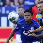 Comunio-Gerüchteküche: Ibisevic vor Schalke-Wechsel – Leverkusens Alario vor dem Abflug?