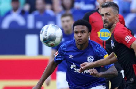 Während Vedad Ibisevic vor einem Wechsel zum FC Schalke 04 steht, steht Weston McKennie vor dem Abgang