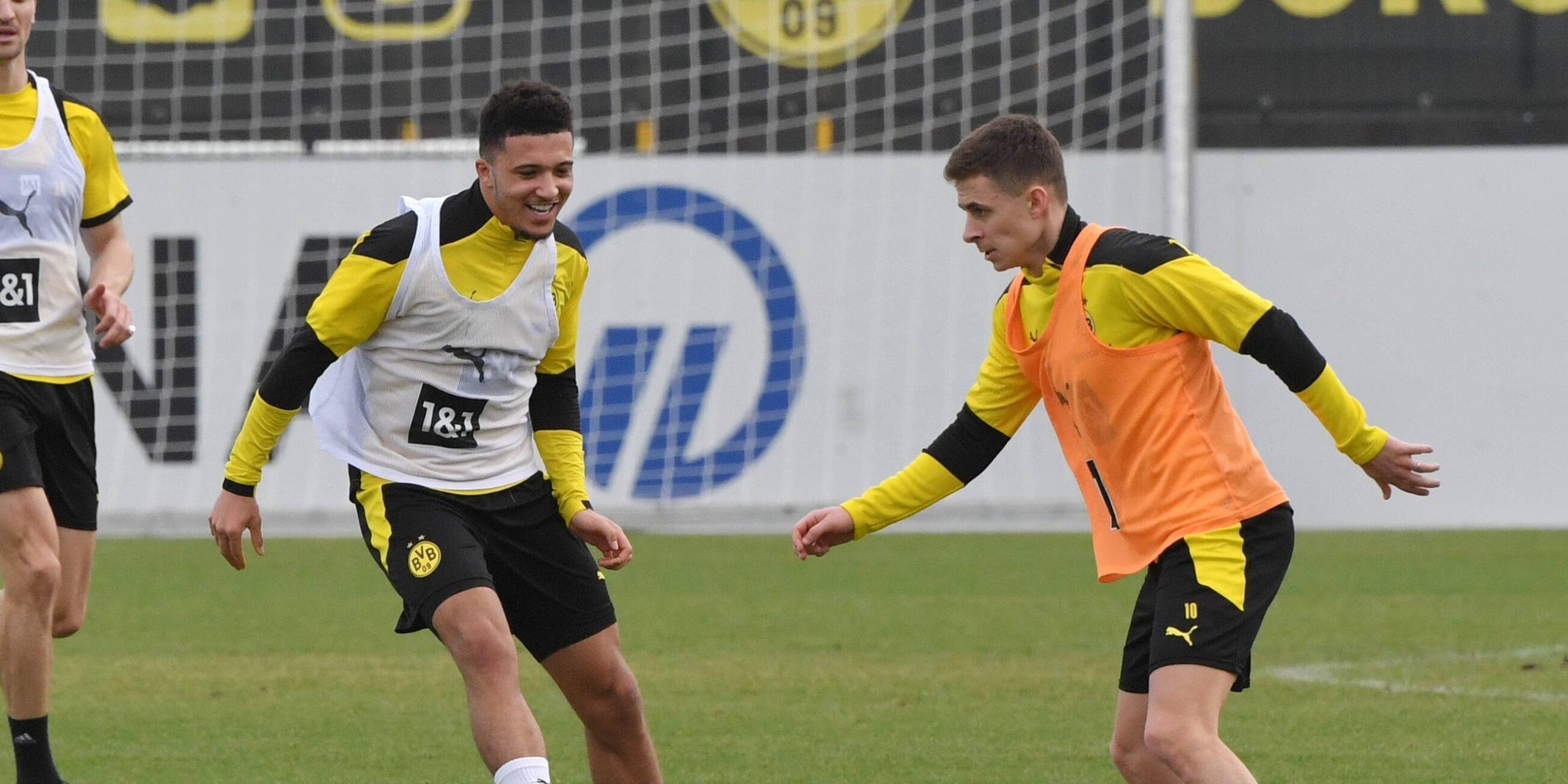 Sancho Hazard BVB